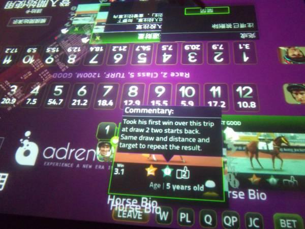 IBU betting table close-up