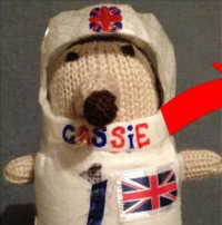 CASSiE the Cosmic Hedgehog