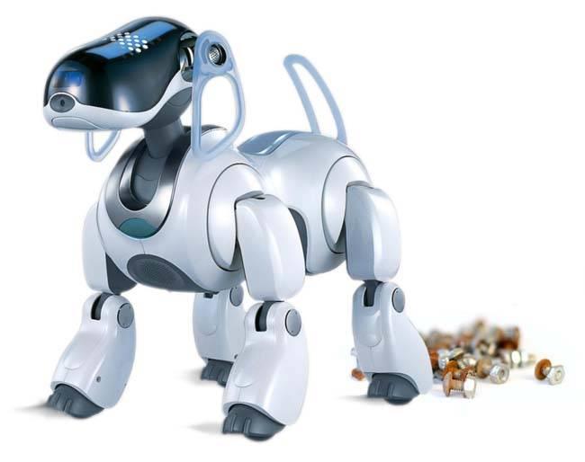 Robo doggy doo