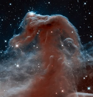 Infrared image of the Horsehead Nebula