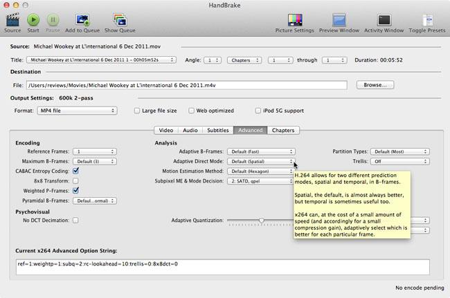 H.264 Handbrake app advanced options