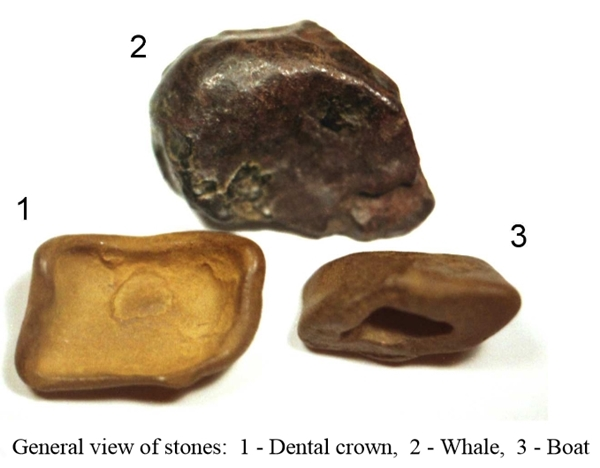 Tunguska meteorite samples