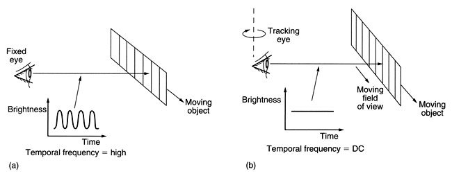 Motion tracking and eye movement