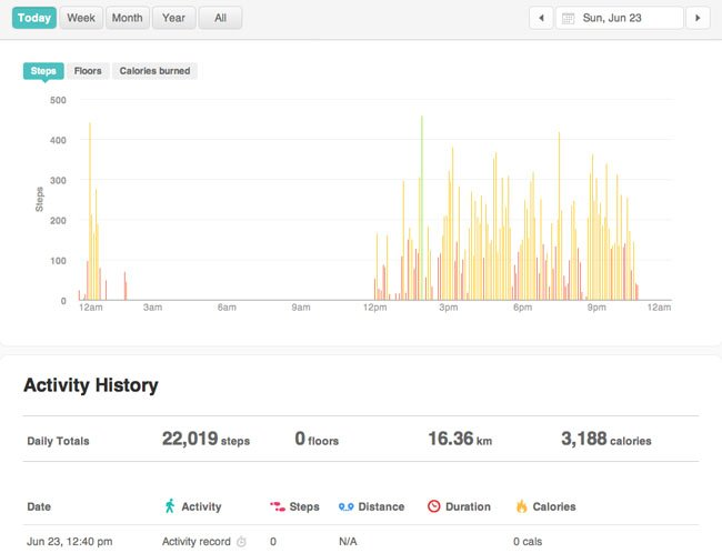 Fitbit Flex activity monitor daily record