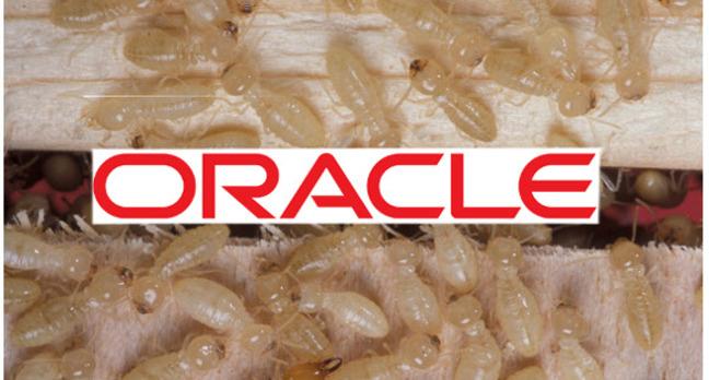 Oracle Termites