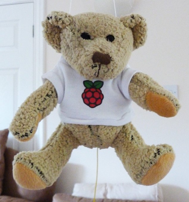 Bionic Babbage dangling and ready for action. Pic: Dave Akerman