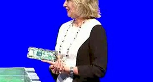 Data Center GM Diane Bryant and an Avoton microserver