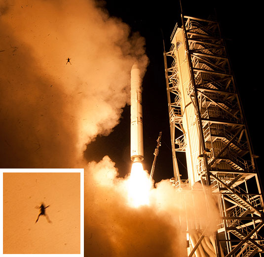 Photo of a frog captured during the NASA LADEE launch