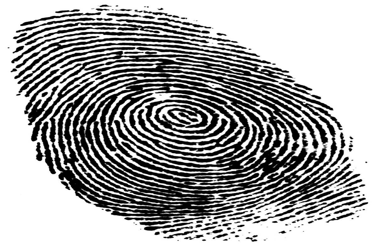 German Minister Photo Fingerprint 'theft' Seemed Far Too