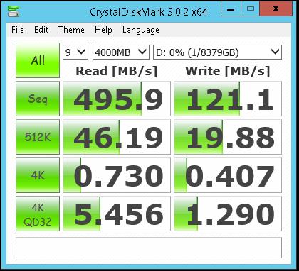 Sentinel DS6100 chipset RAID