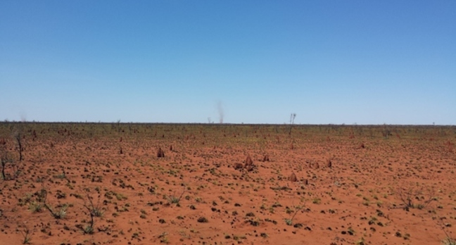The Tanami Desert en route to Willowara