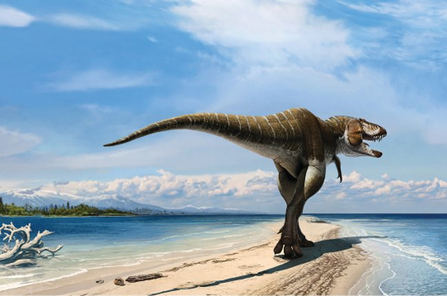 Artist's impression of the Lythronax argestes