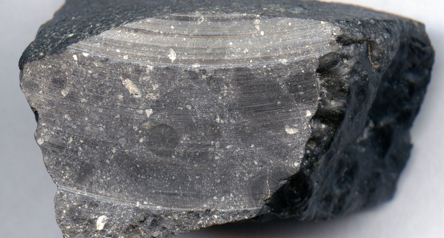 Martian meteorite NWA7533