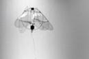 Jellyfish flying robot
