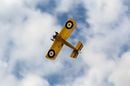 Sopwith Pup RC Plane trench level view