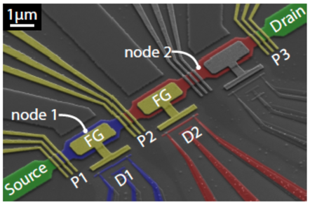 Quantum amp device