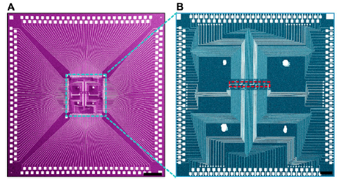 The Harvard/MITRE nanoFSM