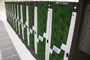 The Zythos Supercomputer at Australia's iVEC