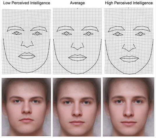 Men's faces perceived to be of low, average, and high perceived intelligence