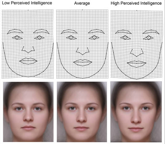Women's faces perceived to be of low, average, and high intelligence