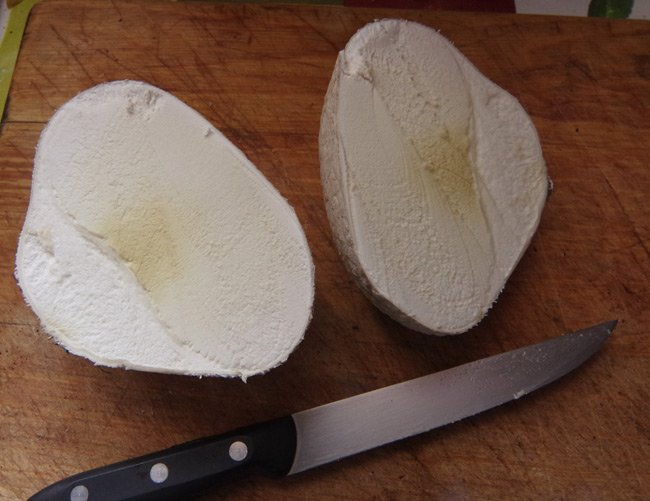 The mosaic puffball sliced in two
