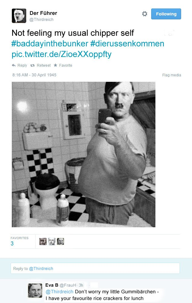 Adolf does a mirror selfie and posts it to Twitter