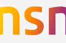 Nokia - NSN logo