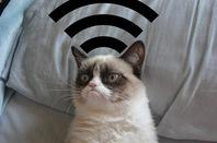 Wifi grumpy cat