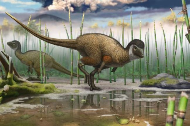 Kulindradromeus zabaikalicus, a plant-eating feathered dinosaur