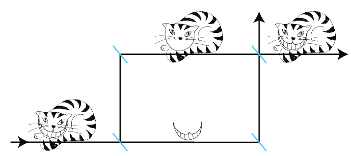 The quantum cheshire cat