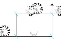 The quantum cheshire cat