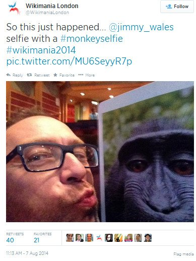 G Force Chip >> Cracking copyright law: How a simian selfie stunt could ...