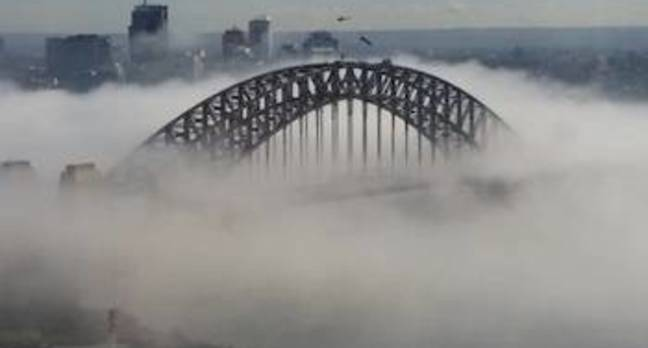 Sydney harbour bridge poking out of the clouds