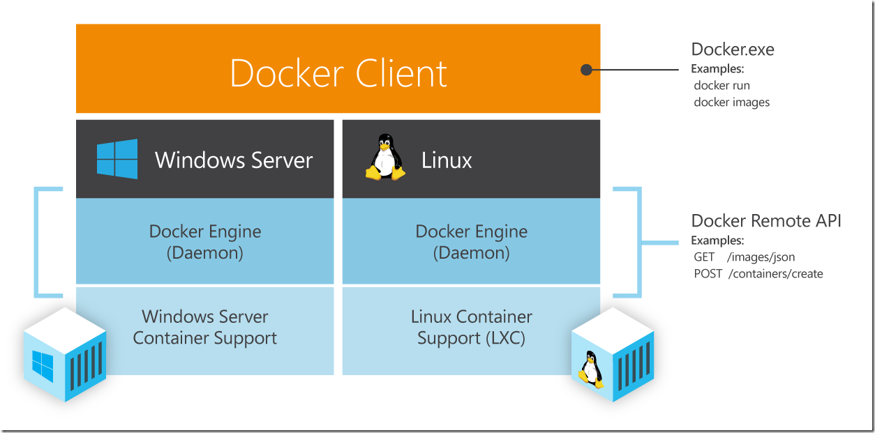Docker for Linux and Windows