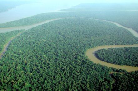 Amazon_rain_forest