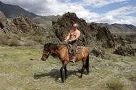 President Putin on horseback