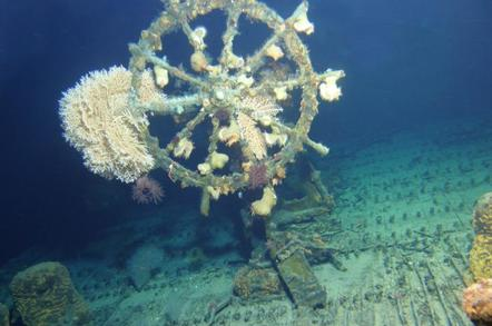 Wheel of a sunken ship,  covered in barnacles