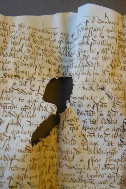 Parchment made of sheepskin
