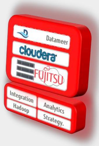 Fujitsu_PfH_marketing_diagram