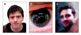 Image reflected in subject's cornea