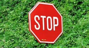 Stop sign in front of a bush. Image via Shutterstock