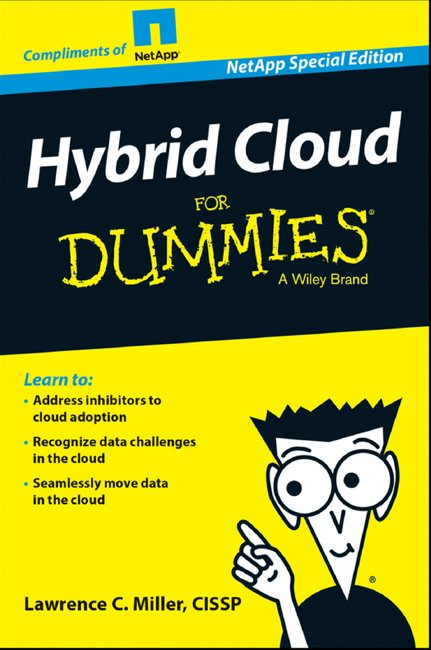 NetApp dummies hybrid cloud