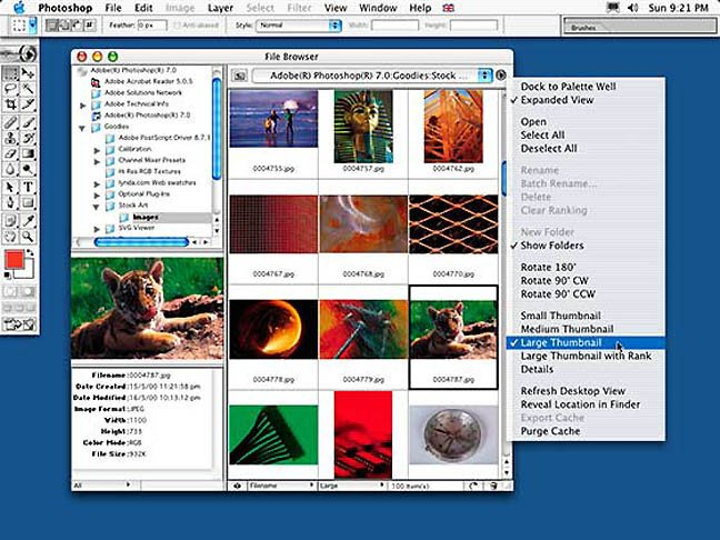 Adobe Photoshop 7 file browser