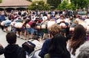 People mooning a crowd