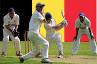 Belgian cricket. Original pic: Simon Blackley