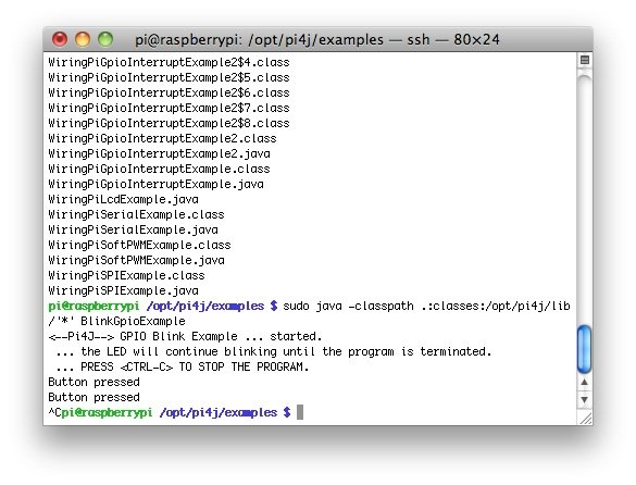 RaspberryPi Java CommandLine