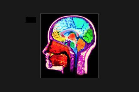 fmri_brain_v2