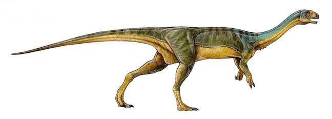 Chilesaurus diegosuarezi. Image credit: University of Birmingham