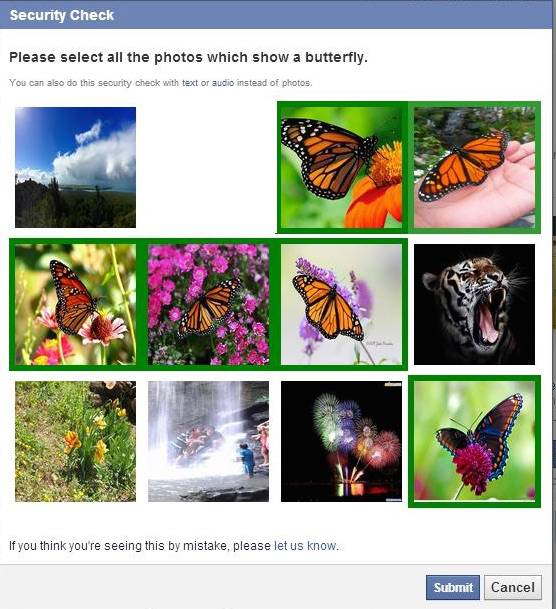 Facebook Butterfly Captcha