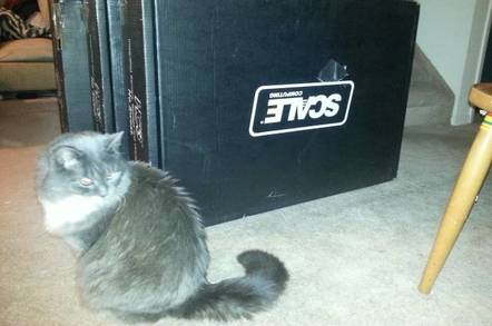 Scale Computing boxes with kitty